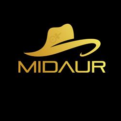 Midaur App
