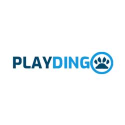 Playdingo Casino App