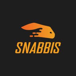 Snabbis Casino App